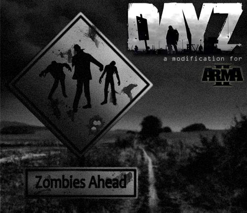 dayzzzz