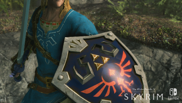 SkyrimSwitch_Shield